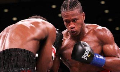 Boxer Patrick day.